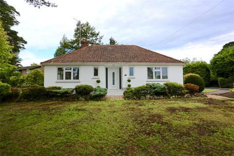 3 bedroom detached bungalow for sale - Apple Tree Grove, Ferndown, BH22