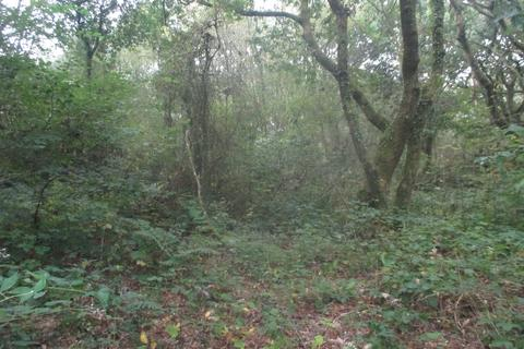 Land for sale - Approximately 3.74 acres of woodland at Welsh St Donats