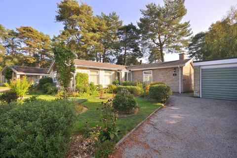 3 bedroom detached bungalow for sale - Ashley Park, Ringwood, BH24 2HA