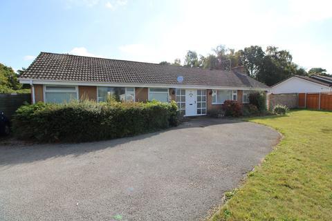 3 bedroom detached bungalow to rent - Berkley Avenue, Ferndown BH22