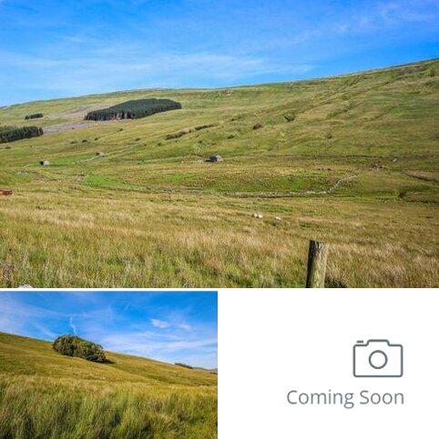 Farm land for sale - 550 Acres (222Ha) Approx, Part Stonegill Foot, Hawes, North Yorkshire