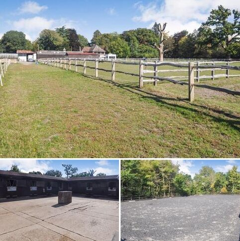 3 bedroom equestrian property to rent - Valley End, Chobham