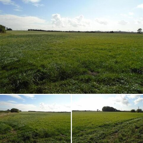 Land for sale - Land at Owstwick, Burton Pidsea