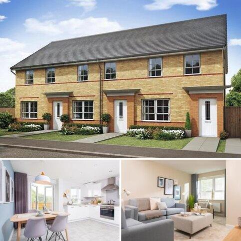 3 bedroom terraced house for sale - Plot 136, Maidstone at Alexander Gate, Waterloo Road, Hanley, STOKE-ON-TRENT ST1