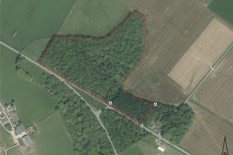 Land for sale - North Balfern Woodland, Kirkinner, Newton Stewart, Wigtownshire, DG8