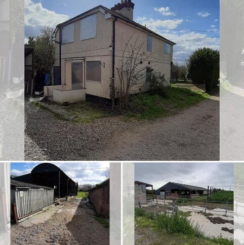 Farm for sale - Sealand