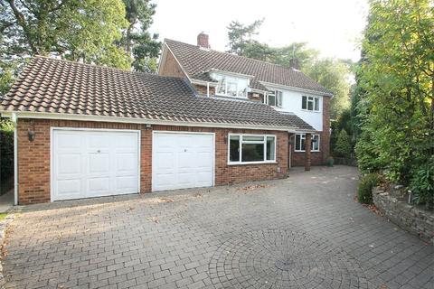4 bedroom detached house to rent - Carlinwark Drive, Camberley, GU15