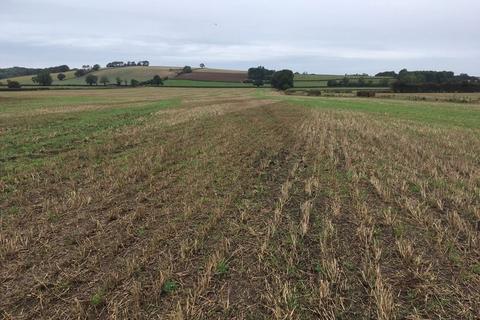 Land for sale - 41.82 Acres Good Arable Land for Sale Tetford Fen, Clay Lane, Horncastle