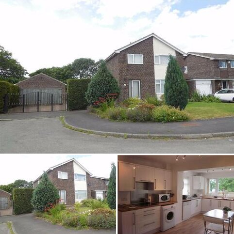 4 bedroom detached house to rent - The Firs, Darlington
