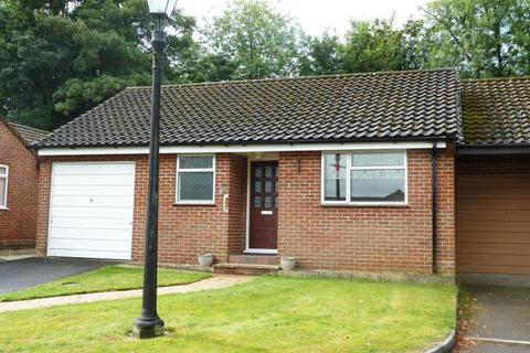2 bedroom semi-detached bungalow to rent - Salisbury