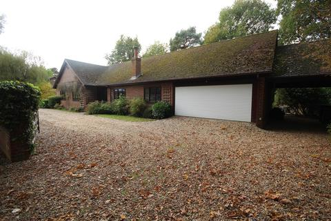 4 bedroom detached bungalow to rent - Nine Mile Ride, Finchampstead, Wokingham