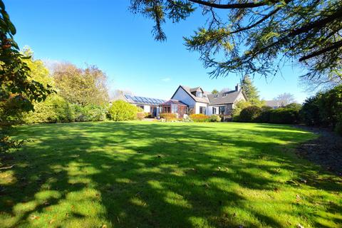 4 bedroom detached bungalow for sale - Castle Rise, Spittal, Haverfordwest