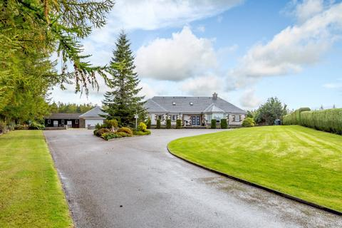 6 bedroom equestrian property for sale - Culbokie, Dingwall