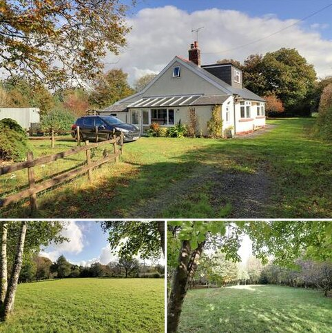 Equestrian property for sale - Highampton, Beaworthy