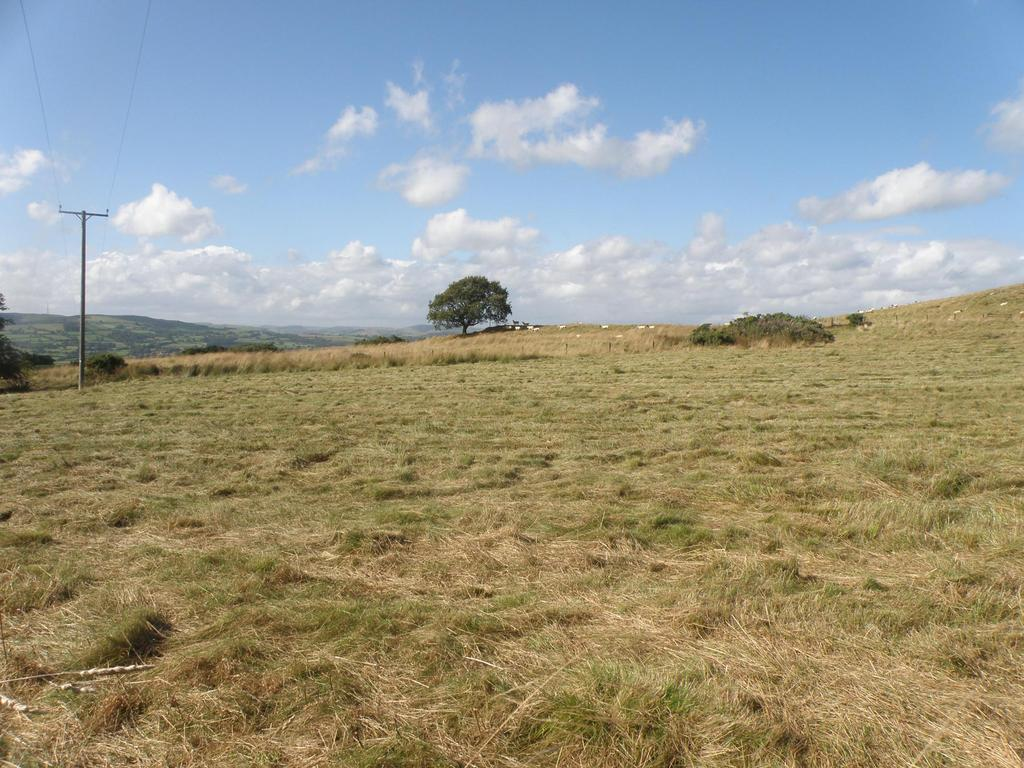 Land Commercial for sale in Llandrindod Wells, Powys