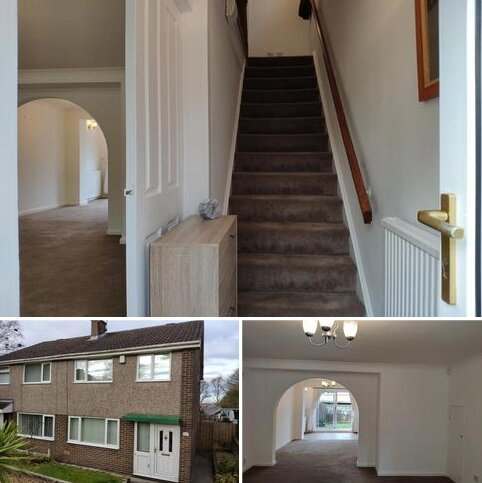 3 bedroom semi-detached house to rent - Briardene, Burnopfield, Newcastle Upon Tyne NE16