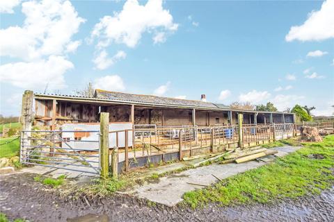 Plot for sale - Bridgerule, Holsworthy