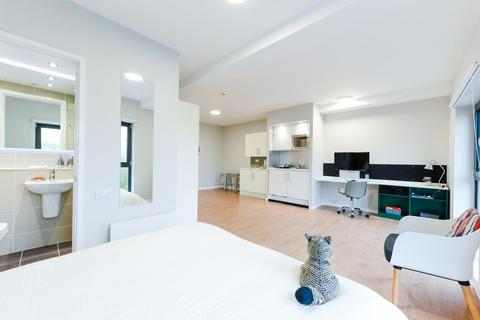 Studio to rent - Brougham Hayes, Bath, BA2