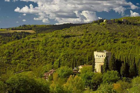 25 bedroom house - Tuscany, Provincia di Siena, Italy
