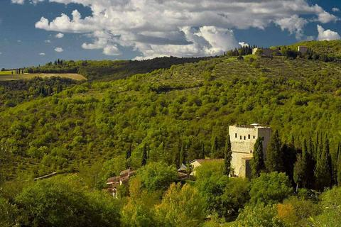 25 bedroom house - Siena, 53100, Italy