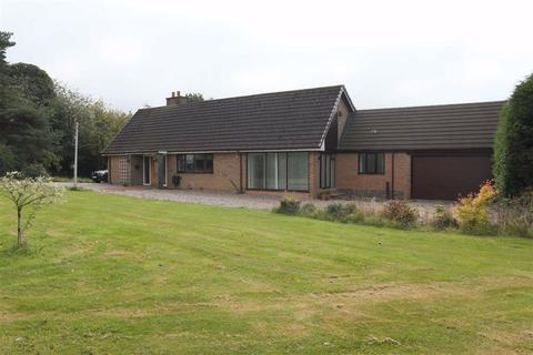 4 bedroom detached bungalow to rent - Hilderstone Road, Meir Heath
