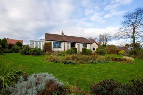 4 bedroom detached bungalow for sale - Berwick Upon Tweed, Northumberland, TD15