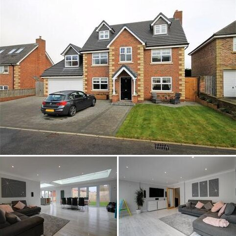 6 bedroom detached house for sale - Sycamore Court, High Spen, Rowlands Gill, NE39