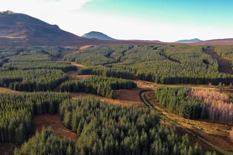 Land for sale - Near Forsinard, Sutherland KW13