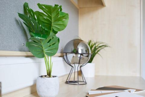 1 bedroom flat share to rent - De Walden Way