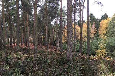 Land for sale - Gartarry Wood, Alloa, Clackmannanshire