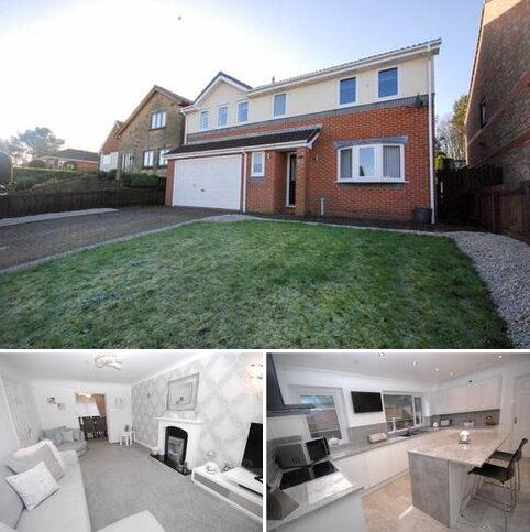 4 bedroom detached house for sale - White House Way, Windy Nook