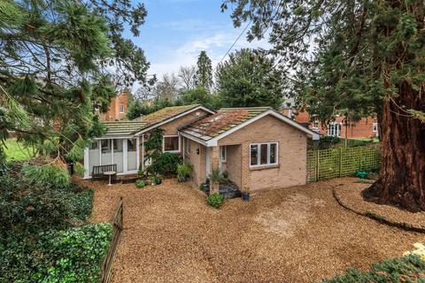 3 bedroom bungalow for sale - Frog Hall Drive, Wokingham, Berkshire, RG40 2LF