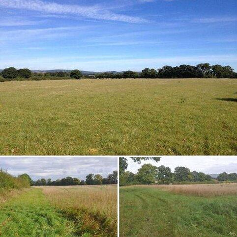 Land for sale - Edenbridge, Kent / Surrey / Sussex border