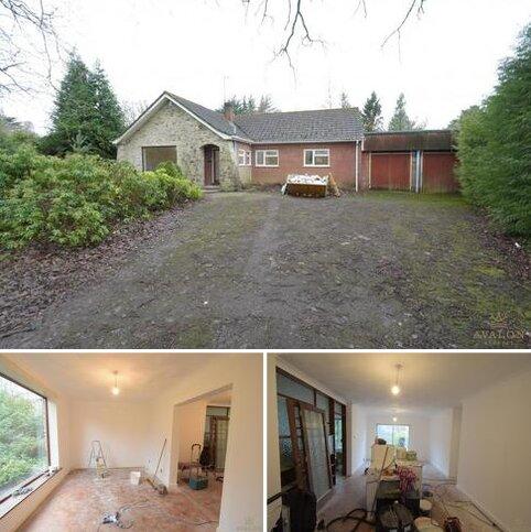 3 bedroom bungalow to rent - Golf Links Road, BH22