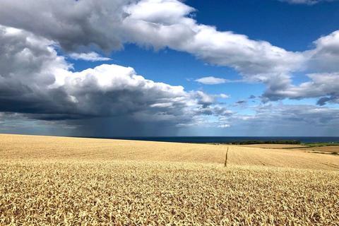 Land for sale - Seaham Grange Farm, Stockton Road, Seaham, County Durham, SR7