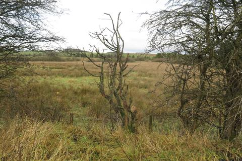 Land for sale - Springfield Road Salsburgh