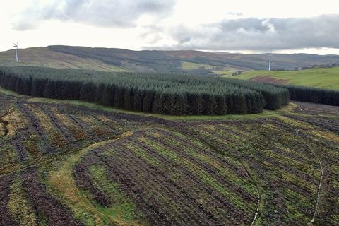 Land for sale - Near Girvan, south west Scotland KA26