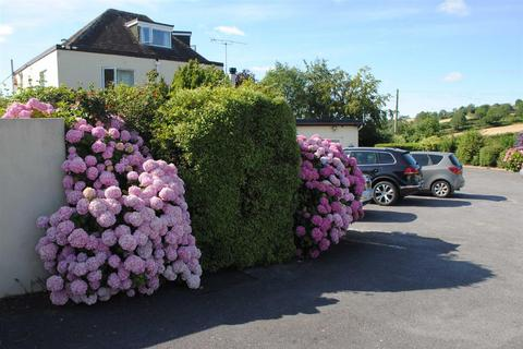 1 bedroom apartment to rent - Devon Palms, Teignmouth Road, Torquay